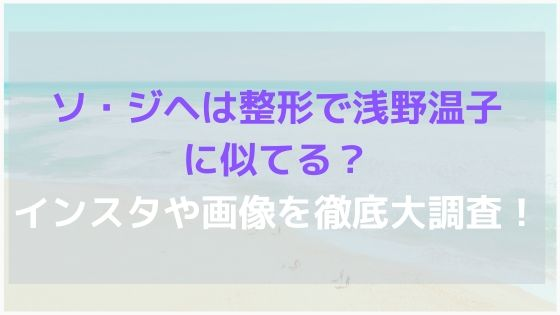 ソ・ジヘは整形で浅野温子に似てる?インスタや画像を徹底大調査!