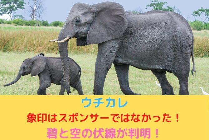 ウチカレは象印はスポンサーではなかった!碧と空の伏線が判明!